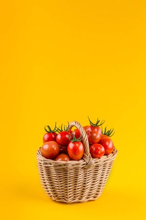 Basket with tomatoes on bright yellow paper background. harvesting tomatoes. Food background concept with copyspace.
