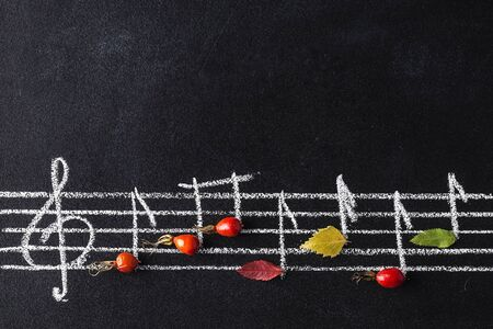 Musical notes conception. Music scale with treble clef and notes on chalkboard. berries and leaves on chalkboard. autumn composition. Top view,  Flat lay. Space for text. Reklamní fotografie