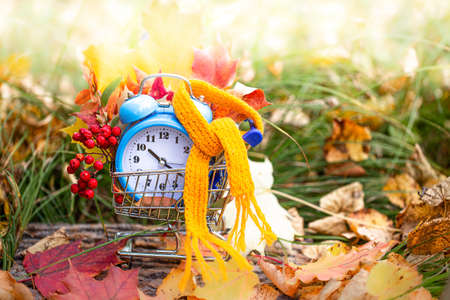 Vintage alarm clock and maple tree leaves in autumn forest. Autumn season image style. Fall Back Daylight Saving Time concept. Daylight savings time. autumn season. fall time. copy space
