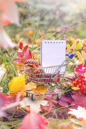 Halloween and Thanksgiving concept, autumn sales. Fall season. maple leaves, berries and notebook in supermarket trolley. Autumn season image style.