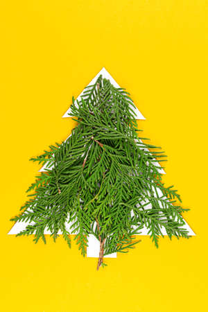 Chrristmas tree made of coniferous tree branches on pastel yellow background.