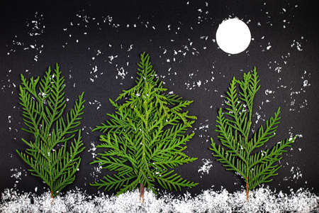 Green Chrristmas tree made of coniferous tree branches on a dark background. Minimal composition background. New Year and Christmas concept.