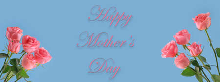Pink roses on pastel blue background with happy Mothers day text. Copy Space 写真素材