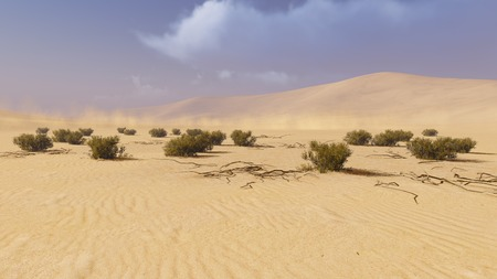 sandhills: Desert landscape with dry plants on foreground and with haze on the distance