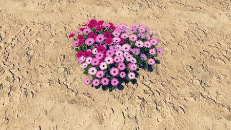 barren land: Heart-shaped flower-garden among a barren land Stock Photo