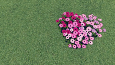grass plot: Heart-shaped flower-garden growing on the grass plot Stock Photo