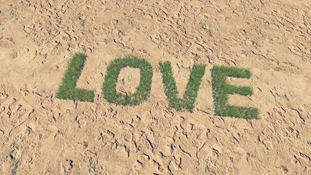 barren land: Love text made from fresh grass among a barren land