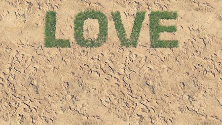 waterless: Love text made from fresh grass among a barren land