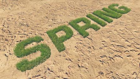 barren land: Spring text made from fresh grass among a barren land