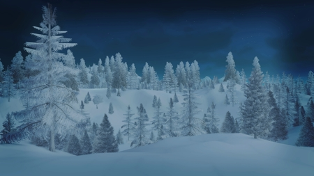 Snowbound spruce forest at night Imagens