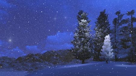 Winter night in the snowbound pinewood Imagens - 37472503