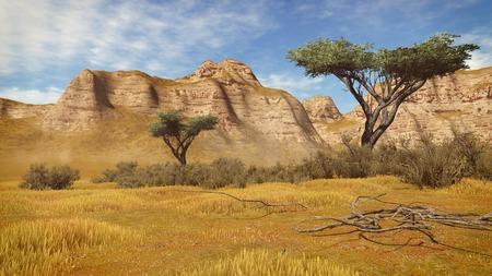 plantas del desierto: Acantilados rayados y plantas del desierto en un cañón