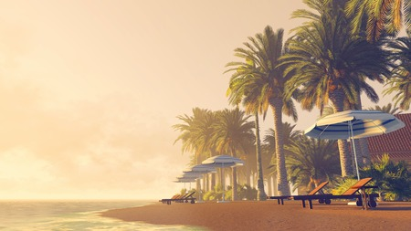 sunrise: Sandy tropical beach with palm trees, deckchairs and parasols at sunrise or sunset