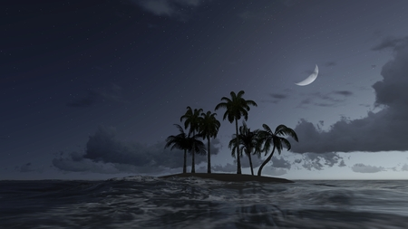 half moon: Small tropical island with a few palm trees silhouetted against night sky with a half moon Stock Photo