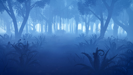 thickets: Misty night forest with fern thickets on foreground Stock Photo