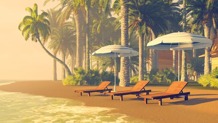 palm tree: Tropical beach with palm trees, deckchairs and parasols at sunset