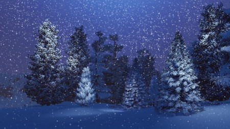 dreamlike: Dreamlike winter scenery. Snow-covered spruce forest at magical snowfall night. Background is out of focus. Stock Photo
