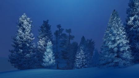 夢のような冬の夜に雪に覆われたのトウヒ林
