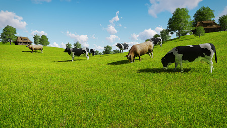 Rural scenery with a herd of cows grazing on the green meadows nearby from the rustic houses. Realistic 3D illustration was done from my own 3D rendering file.