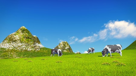 verdant: Farm landscape with a few mottled dairy cows grazing on a verdant alpine meadow at sunny day. Mountain peaks on the background.