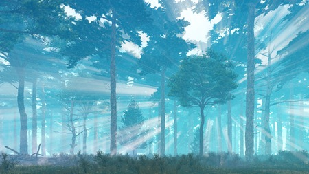 Fairytale scenic pine forest with sunbeams shining through the trees at misty dawn or dusk Stock Photo
