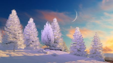 Fairytale winter landscape with snow covered fir trees under scenic sunset or sunrise sky with big half moon. 3D illustration. Stock Photo
