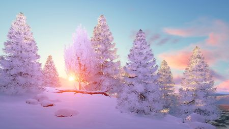Calm winter landscape with snow covered fir tree forest at scenic sunset or sunrise. 3D illustration.