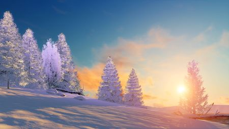 sunrise sky: Winter landscape fir tree forest covered with snow under scenic sunset or sunrise sky. 3D illustration.