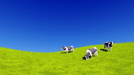 Countryside landscape with dairy cows grazing on green meadow against clear blue sky background with copy space. 3D illustration.
