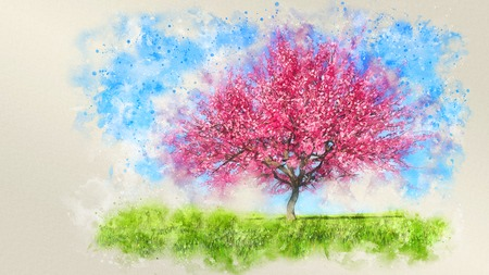 Watercolor sketch of lush blooming single sakura cherry tree on a field covered with green grass against clear blue sky at spring day. Digital art illustration from my own 3D rendering file.
