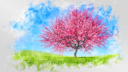 Decorative watercolor sketch of bright scenic spring landscape with single sakura cherry tree in full blossom a hills covered with green grass. Digital art painting from my own 3D rendering file. Imagens - 119345721