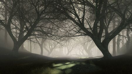 Trail into dark mysterious forest with last sun rays shining through creepy dead trees silhouettes at misty dusk or night. Fantasy woodland scenery 3D illustration from my rendering file.