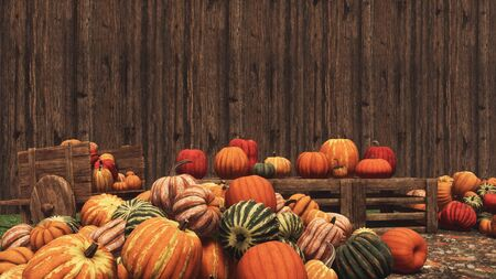 Various colorful autumn pumpkins for sale on country market against blank wooden wall background with copy space. Thanksgiving and Halloween festive concept 3D illustration from my own rendering file. Imagens