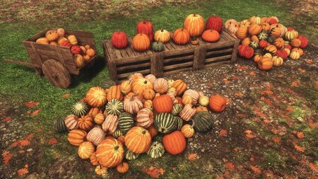 High angle view of colorful autumn pumpkins for sale at outdoor rural farmer's market for Thanksgiving or Halloween holidays. With no people festive fall season 3D illustration from my rendering file. Imagens