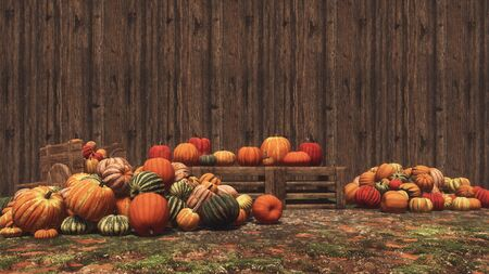 Autumn pumpkins laid out on wooden crates and on ground at outdoors farmer's market against wood wall background with copy space. Thanksgiving and Halloween 3D illustration from my own rendering file.