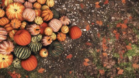 Close-up top view of colorful autumn pumpkins piled on ground at outdoor rural farmer's market for Thanksgiving or Halloween holidays. Fall season festive 3D illustration from my rendering file. Imagens