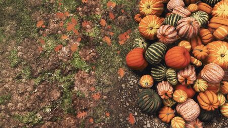 Close-up top view of various colorful autumn pumpkins piled on ground at outdoors farmers market for Thanksgiving or Halloween holidays. Fall season concept 3D illustration with place for text.