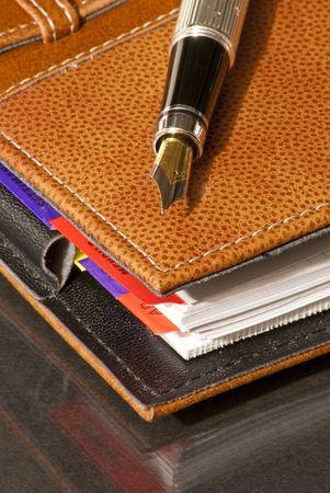 listings: fountain pen on a leather Agenda