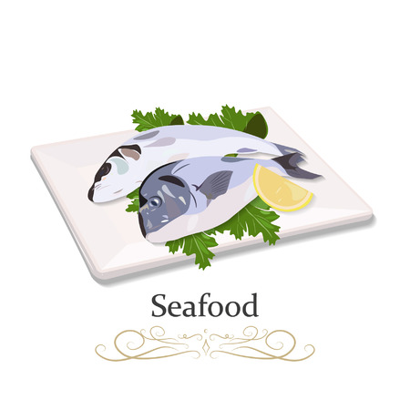 Two raw fish on a plate with greens. Vector illustration of a closeup of the top side.