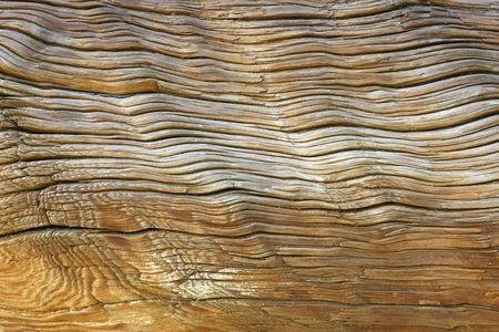 interstitial: Age of Wood. abstract textured background