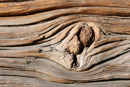 sandblasted:  old wooden texture