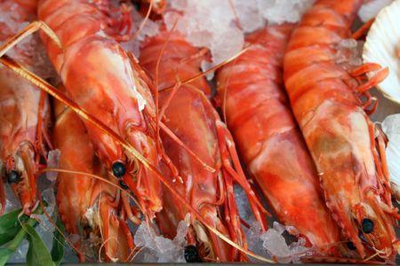 Fresh prawn lay on an ice