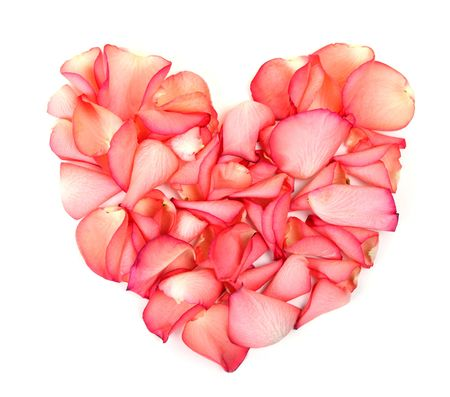 Heart made of petals of roses photo