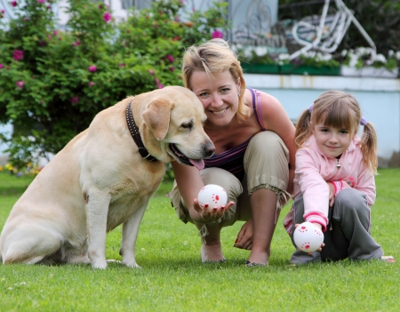 family plays with a dog a lawn at the house photo