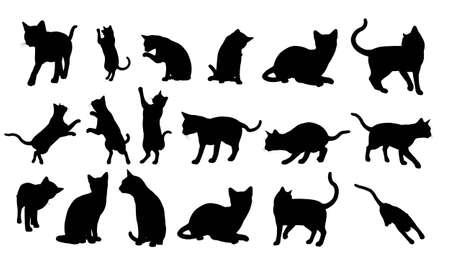 silhouette gatto: Gatto Silhouette