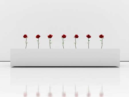 Roses in white room