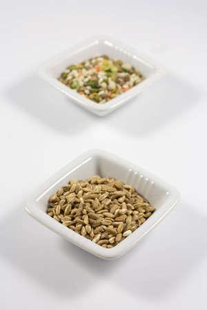 barley and legumes photo