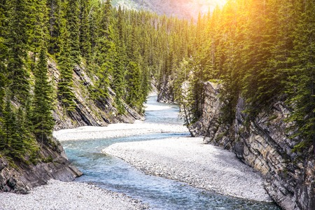 lower yellowstone falls: The river in canyon Stock Photo