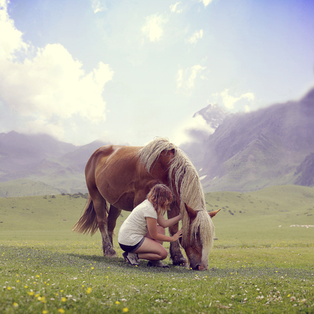 trakehner: Girl stroking a pregnant horse in the field Stock Photo