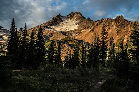 cascade range: Mt. Jefferson, Oregon Cascades, Jefferson Park, columbine in field